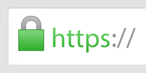 Using https for secure internet browsing